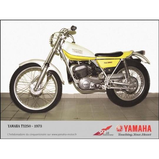 yamaha-ty-250-stainless-allen-screw-kit