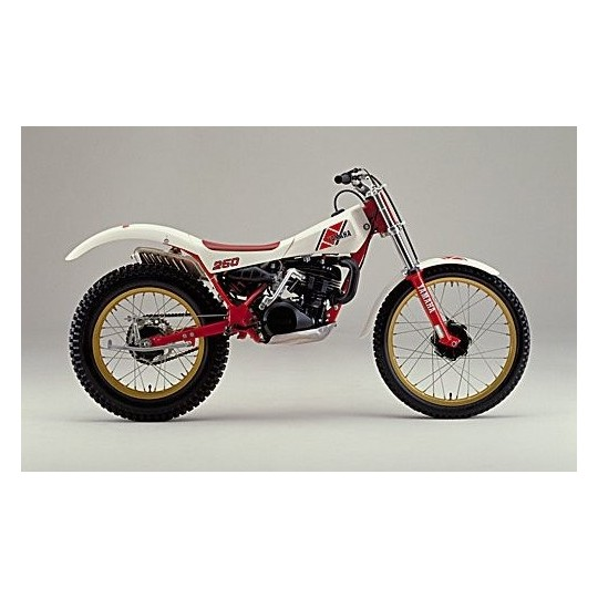 yamaha-ty-250-350-stainless-allen-screw-kit